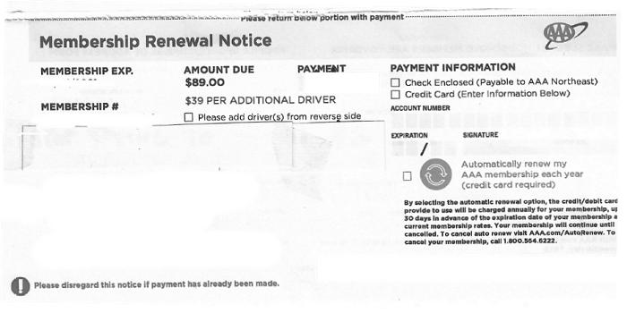 AAA payment stub