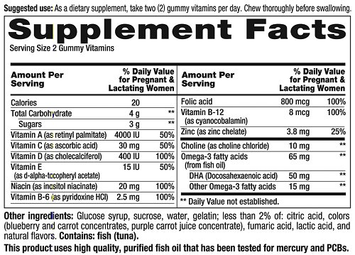 Target Prenatal Vitamins Nutrition Facts Besto Blog